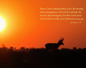 Photo Card with Scripture- Pronghorn Antelope against flaming sunset in New Mexico (SCJOS19)
