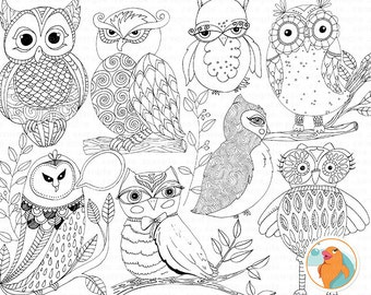 Hoot Owls Line Art Illustration, Owl ClipArt Drawing, Owl Doodles, Hand Drawn Design, Instant Download Clip Art for Commercial Use
