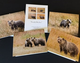 Grizzly Meadows  Set of four Note Cards