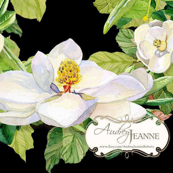 Watercolor Magnolia Floral Wreath Digital Clip Art Clipart