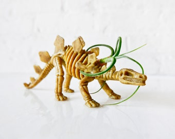 Spike the Stegosaurus - Dinosaur Air Plant Garden Gift - Prehistoric Fun - Vegetarian Reptile Pet