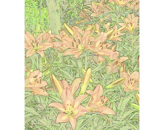Arts & Crafts Style Floral Art Print of Daylilies in a Garden
