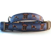 Boxer dog collar. Engraved pet tag included with each dog collar.