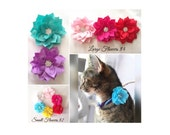 Pet Collar Flowers