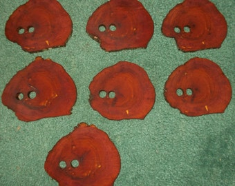 7 Red Cedar Heartwood Wood Slices - Christmas Ornaments, Aromatic Closet FREE SHIPPING!!!