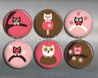 CUTE OWL MAGNETS with gift pouch - Set of 6