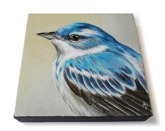 Cerulean Warbler painting, blue songbird wildlife art, 6x6 canvas square
