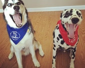 Big Sister or Big Brother Dog Bandana can also make for Little Brother or Little Sister