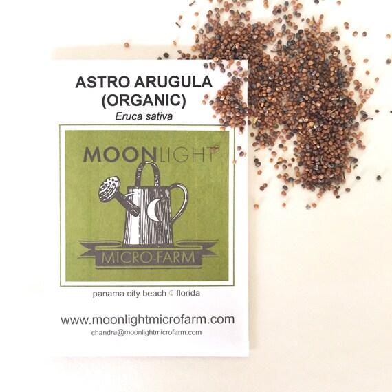Organic Astro Arugula Seeds