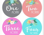 Flower Baby Girl Monthly Sticker Month