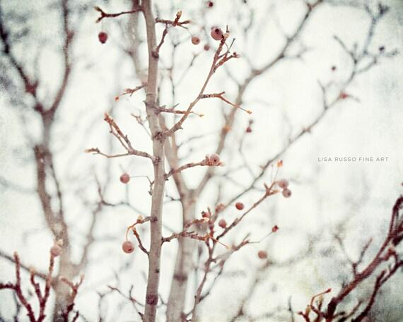 Nature Photo Print or Canvas Art, Grey Wall Art, Cream Mint, Tree Photo, Winter Berries, Autumn Decor, Nature Decor, Pear Tree, Dreamy.