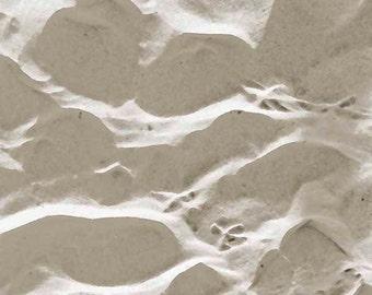 Sandprints, Gray and White Beach Photo, 10x10