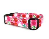 Pink Dog Collar | Pink Peppermints Dog Collar | Holiday Dog Collar | Christmas Dog Collar | Female Dog Collar | Girl Dog Collar