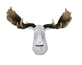 White Moose Head With Realistic Brown Antlers  - Faux Taxidermy Moose M0100