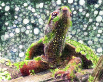 """Original ACEO - Sea Turtle - 2.5"""" x 3.5"""" Unique Artwork - Free Shipping - Portion of Proceeds to Charity"""