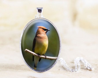 Cedar Waxwing Necklace -Silver Bird Necklace, Bird Photo Jewelry, Cedar Waxwing Photo Pendant, Silver Bird Jewelry, Waxwing Bird Gift