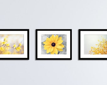 Yellow Grey Wall Art Set, 3 Nature Prints, Yellow Gray Decor, Flower Photography, Floral Photo Pictures, Yellow Grey Nursery Artwork