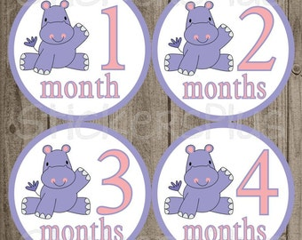Baby Month Stickers Plus FREE Gift Girl Milestone Stickers PRECUT Baby Age Stickers Zoo Jungle Lilac Purple Hippo 1-12m Photo Prop