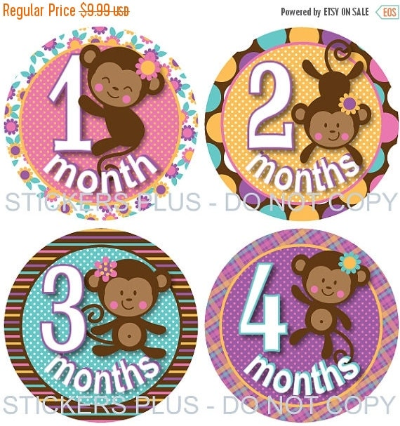 SALE Baby Girl Month Stickers  Monkey Pink Lilac Brown Blue Yellow Dots Stripes Flowers Plaid - 1-12 or 13-24 M Photo Prop