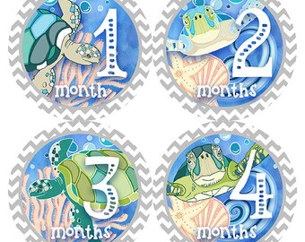 FREE GIFT, Gender Neutral, Baby Month Stickers, Monthly Baby Stickers, Neutral, Baby Girl, Baby Boy, Belly to Baby, Sea Turtles, Nautical