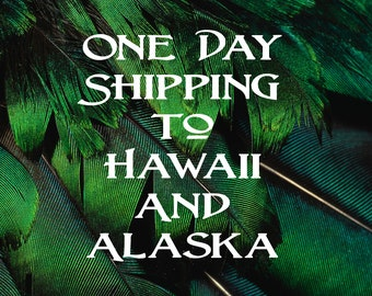 One Day Shipping to Hawaii and Alaska