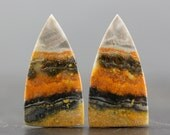 Bumblebee Jasper Pair, Volcanic Cabochons Natural Yellow Black & Orange Paired Stones, Polished Gems and Jewelry Design (CA5468)