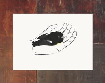 Bird In Hand Print - Tomtit - New Zealand Bird