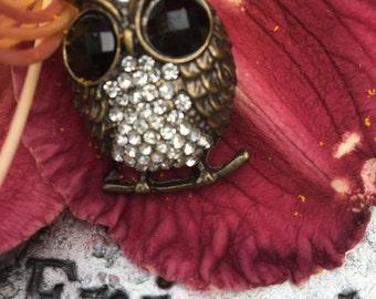 adorable owl necklace.