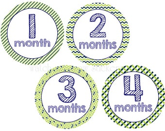 Baby Monthly Stickers Month Stickers Baby Shower Gift Milestone Stickes
