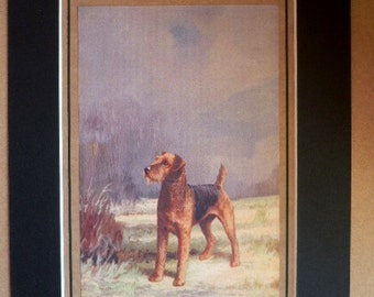 AIREDALE terrier dog Vintage mounted 1931 Ward Binks dog plate print Unique Christmas Thanksgiving birthday present illustration gift