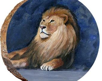 Lion Relaxing - DAC020