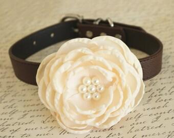 Ivory Floral Wedding dog collar, Dog birthday gift, Pet wedding, flower with Pearls, Ivory wedding