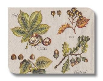Botanical paper napkin for decoupage x 1 Botanical Chart. No 1286