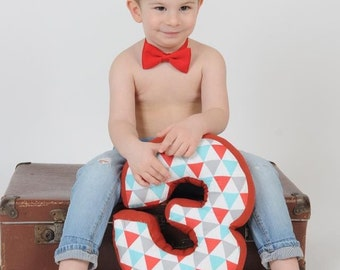 """Number cushion, number 3, number three pillow - birthday pillow - 30 cm * 20 cm / 11.8"""" x 8"""""""