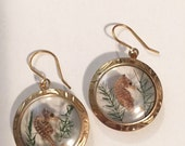 Vintage dried seahorse earrings
