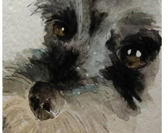 Schnauzer Dog Fine Art Print #117