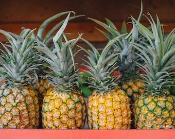 Hawaii Pineapples, Fruit Art, Kitchen Decor, Hawaiian Fruits, Coral, Yellow, Mint, Barn Wood, Tropical Fruit Art, Pineapple Decorations