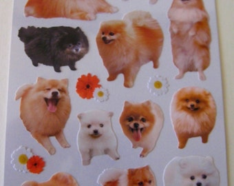 "CLEARANCE From Mind Wave's ""La Dolce Vita"" Series  ""Pomeranians"""