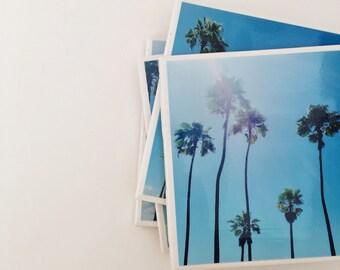 Palm Tree Coasters- Tropical, florida, drinkware