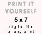 5 x 7 Digital File of Any Print