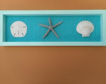 Handmade wooden sea shell shadow box frame / beach decor / nautical decor