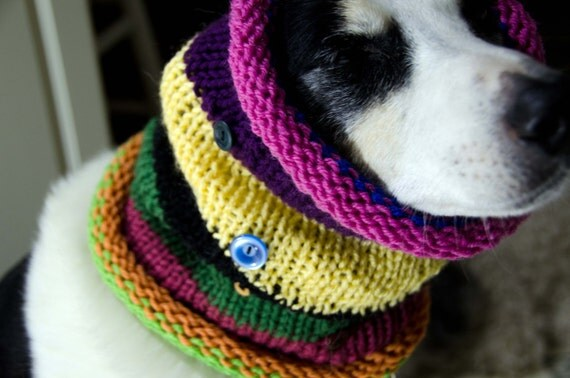 Dog Cowl Knitting Pattern : Knitted Dog Scarf Knitted Dog Cowl Bright and Colorful Size
