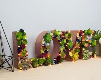 Succulent LOVE Letter Light, succulent letters, light up letter, rustic wedding, initial light