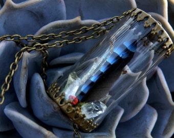 Blue Jay Feather & Quartz Crystal Pendant
