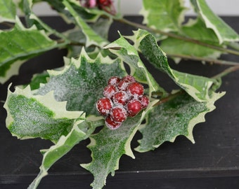 Iced Holly Pic (lot of 3)