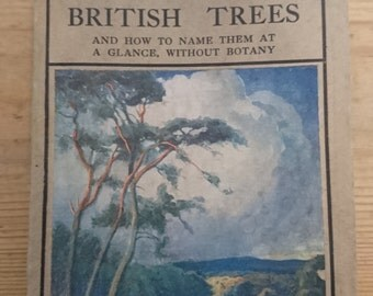 Vintage 1900s Antiquarian book British Trees