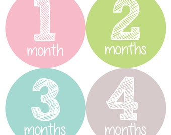 Baby Month Stickers, Monthly Baby Girl Stickers, Baby Month Milestone Stickers  - Baby Girl, Baby Shower Gift, Grey, Pink, Growth Stickers