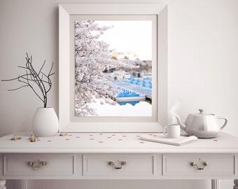 "Washington DC Cherry Blossom Photography, ""Cherry Blossom By Tidal Basin"" Fine Art Photography, Affordable Wall Art"