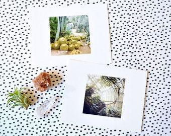 Botanical Garden Postcard Set of 6 - Cacti & Tropical Botany Photography