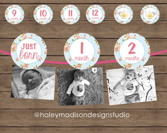 Tea Party 12 month photo birthday banner, Shabby Chic, Tea Party banner decoration, First Year Photo banner DIGITAL FILE